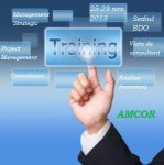 Curs AMCOR - Consulting: Tools, Skills and Ethics