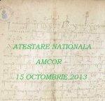 Sesiune atestare/reatestare națională AMCOR, 15 octombrie 2013